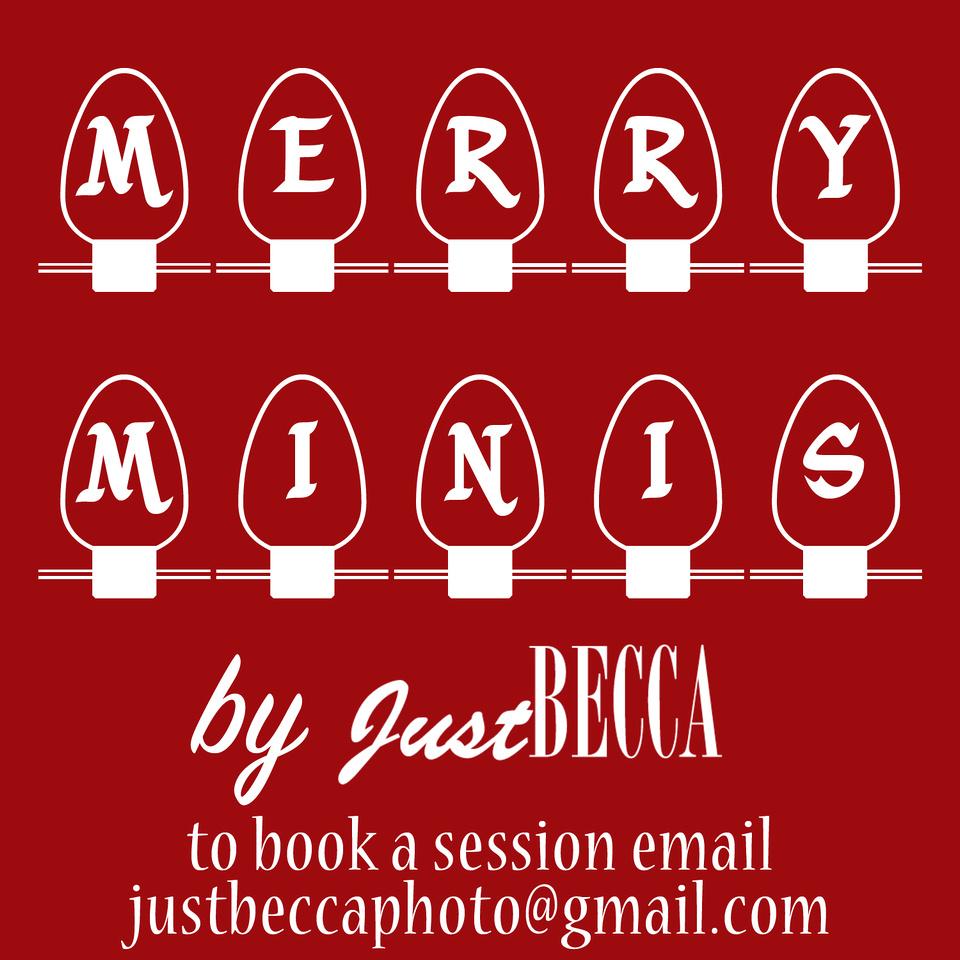 merry minis 2015